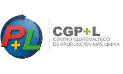 produccion mas limpia centro guatemalteco grupo genesis